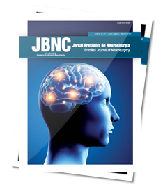 Jbnc jornal brasileiro de neurocirurgia basics of radiobiology what does a neurosurgeon needs to know fandeluxe Image collections